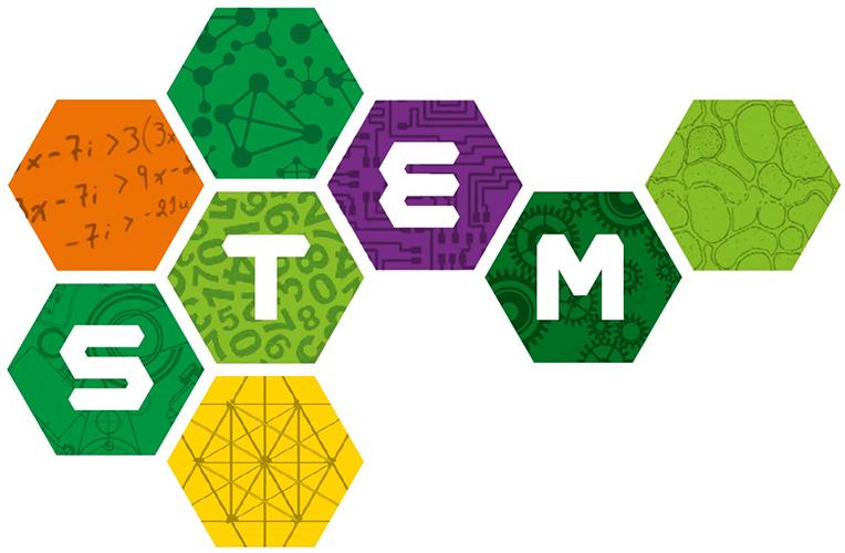 stem-2